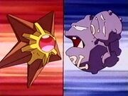 EP112 Staryu de Misty VS Weezing de James