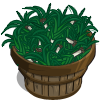 Leeks Bushel-icon
