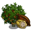 Cocoa Tree-icon