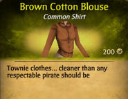 Brown Cotton Blouse