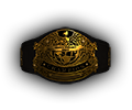 Mw tournament Belt heavy