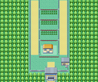 Kanto Route 5