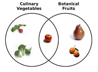 File-Botanical Fruit and Culinary Vegetables