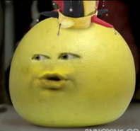 Grapefruitasajester