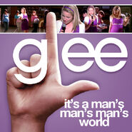Glee - mans world