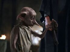 Dobby2