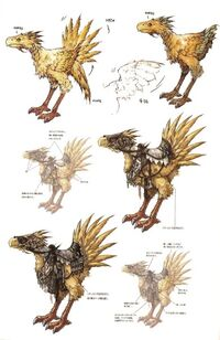 ChocoboFFXIIArtwork