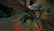 Mature Dragon