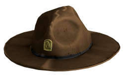 Ranger Hat