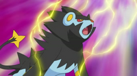 EP648 Luxray usando onda voltio