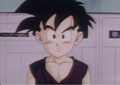 Gohan 2e