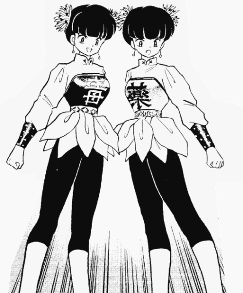 File:Pink and Link.png - Ranma Wiki
