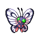 Butterfree F DP Shiny