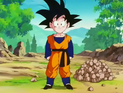 DBZ goten