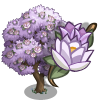 Purple Magnolia-icon