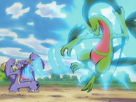 EP342 Grovyle siendo golpeado por vozarrn
