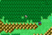 FFII Chocobo Forest WM GBA