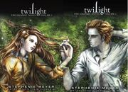 Twilight novel-09089