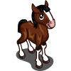 Irish Hunter Foal-icon