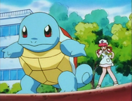 PLEEI Squirtle