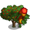 Chinese Strawberry Tree-icon