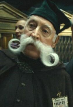 Moustache Ministry of Magic visitor