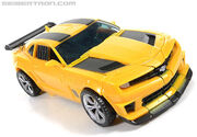 R bumblebee-032