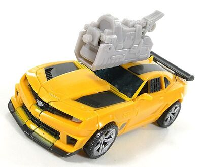 R bumblebee-019