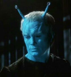 Shran2151