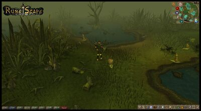 RuneScape site media 17