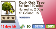 Cork Oak Tree Market Info
