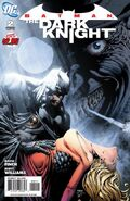 Batman the Dark Knight Vol 1 2