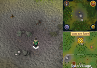 Enchanted key dig spot Karamja