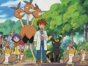 EH15 Gary, Dodrio, Umbreon y Crystal
