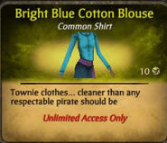 Bright blue cotton blouse