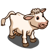 Charolais Cow-icon