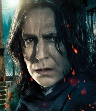 DH2 IAE Snape