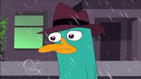 Sad Perry I Walk Away