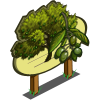 Lucques Olive Tree Mastery Sign-icon