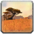 Icon Barrens 01