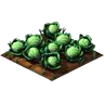 Crop Cabbage Grown SW Icon.png