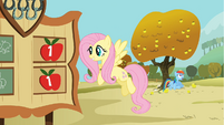 Rainbow Dash sits under an apple tree S1E13