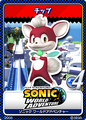 Sonic Unleashed 12 Chip
