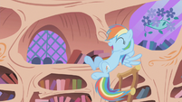 "Rainbow Dash ""I got the ticket"" 2 S01E03"