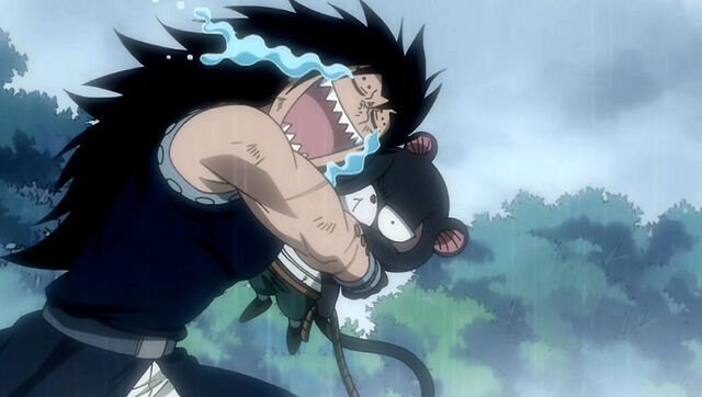 File:Gajeel and Lily.JPG