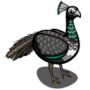 Peahen-icon
