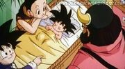 Dbz-family-02