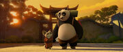 Po and Shifu back from training