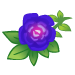 Violet Roses-icon
