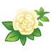 White Wild Roses-icon